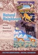 Natural Neighbours