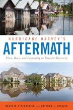 Hurricane Harvey's Aftermath